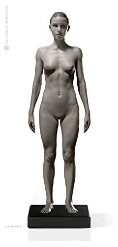 anatomy tools female figure in grey