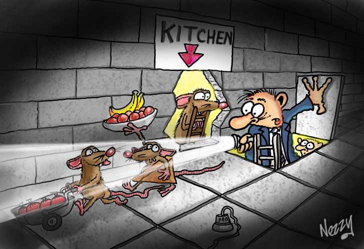 fun to draw by nezzy cartoonist rats stealing from kitchen