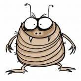 flea-optimised