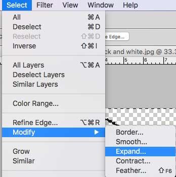pnotoshop elements layers modify and expand